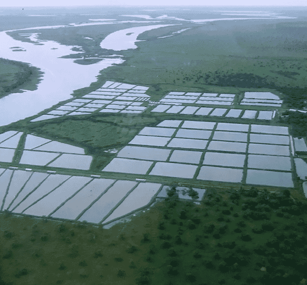 An aerial view of Kafue Fisheries site after significant expansion, illustrating the magnificent Kafue River location.