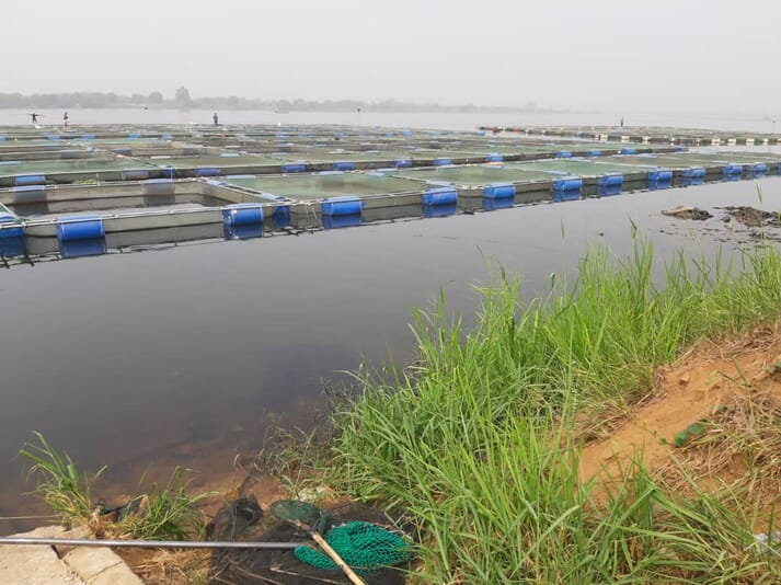 Lake Volta normally produces 90 percent of Ghana's aquaculture output