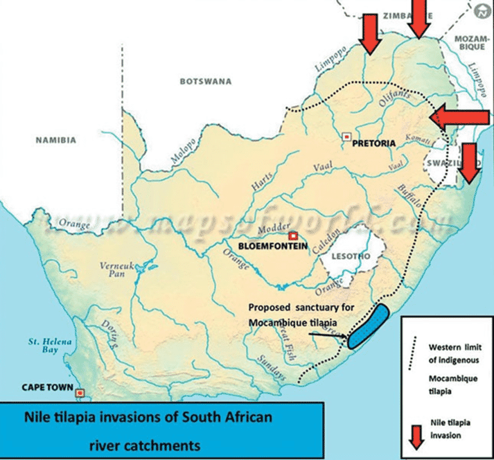 Figure 2: Map of South Africa indicating distribution of O. mossambicus, O. niloticus invasion and proposed O. mossambicus sanctuary