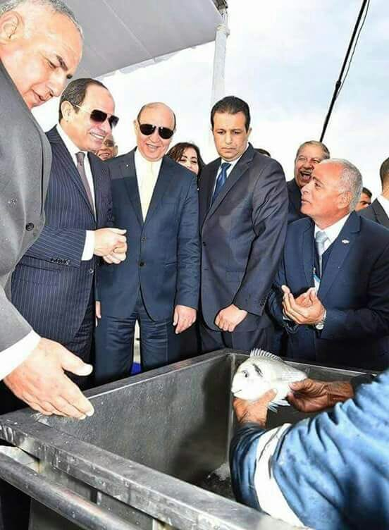 The project was opened by President el-Sisi of Egypt