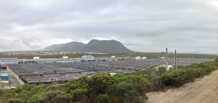 Romansbaai is one of the many abalone farms undergoing rapid expansion. A yellow crane seen in the distance is placing new concrete tanks