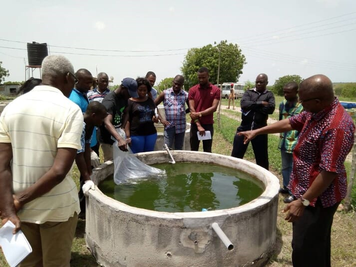 Ainoo-Ansah is launching an online aquaculture course with Stellenbosch University in South Africa and University of the Cape Coast in Ghana