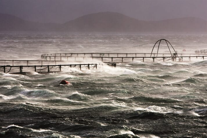 AKVA will now be able to add nets and moorings to its extensive aquaculture product portfolio