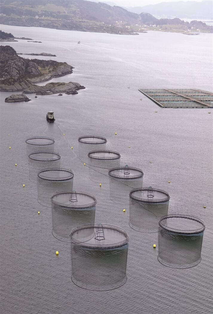 Akva sold four complete salmon farm systems to producers in the Murmansk region in 2012-14.