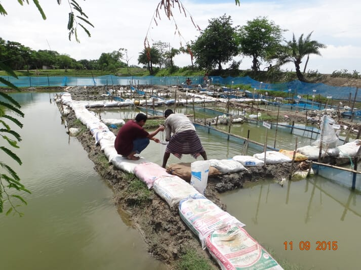 Two men working at an outdoor fish pond