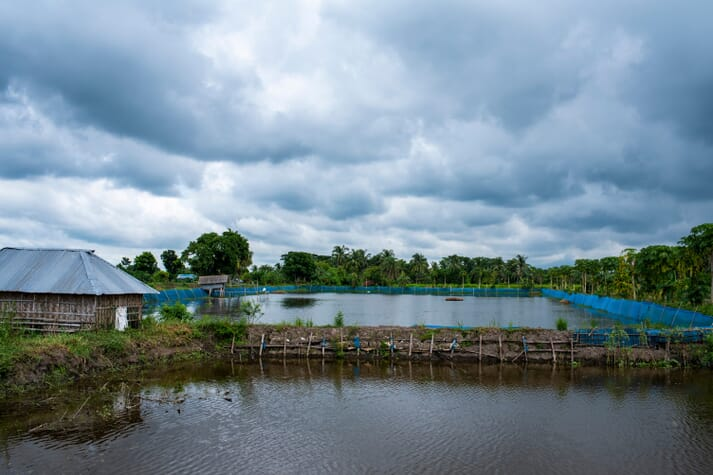 two inland fish ponds