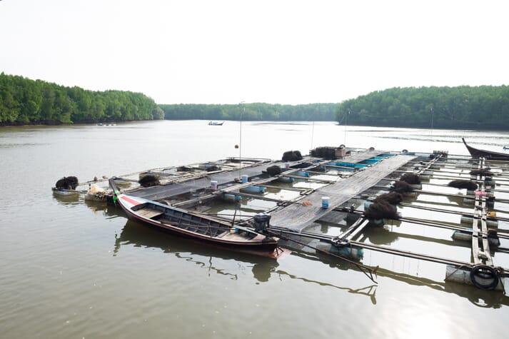 net pen fish farm