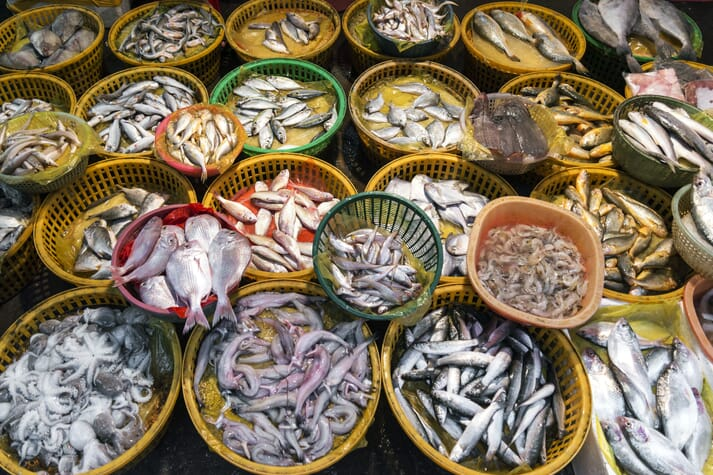 China consumes 37 percent of the world's seafood