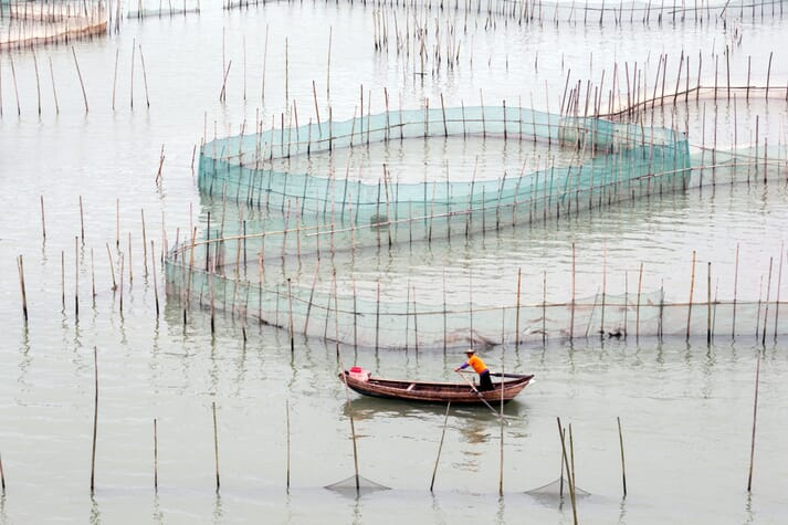A fish farm in China