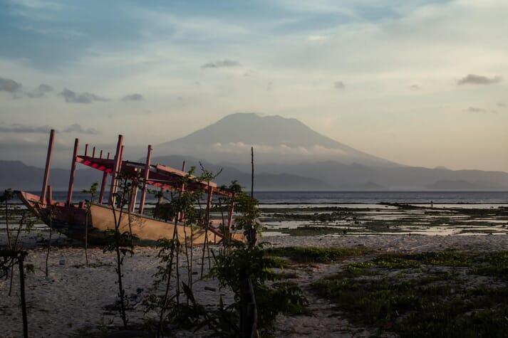 Seaweed in Southern Bali