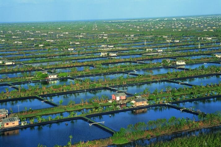 Indonesia contains the world's largest integrated shrimp farm