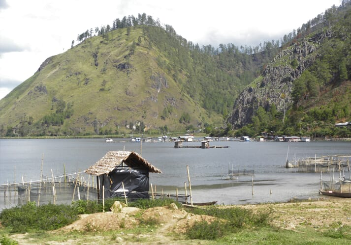 Low tech aquaculture operations such as this tilapia farm on Lake Takengon in Indonesia may look picturesque, but do they help to entrench poverty?