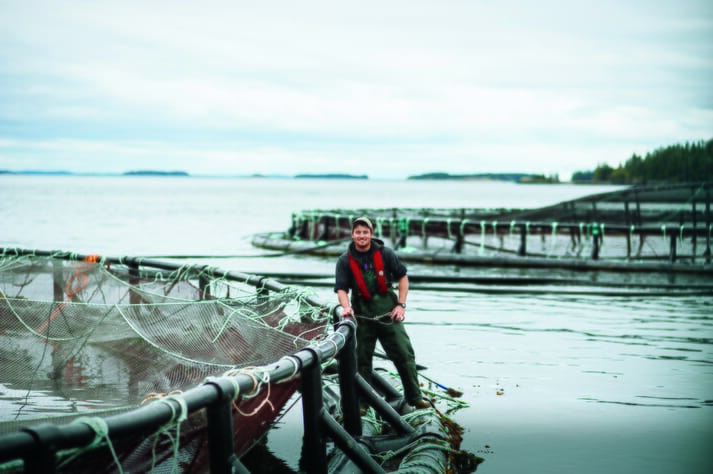 Salmon farming on Canada's east coast is set to grow considerably in the next decade