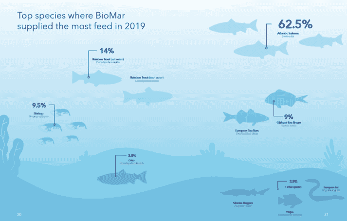 BioMar's feed sales by species during 2019