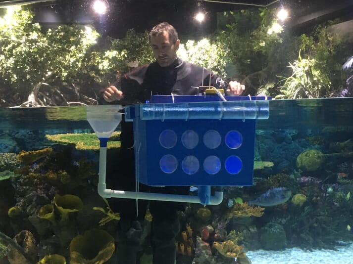 Graham Hill setting up an egg collector in The Deep's Lagoon of Light exhibit