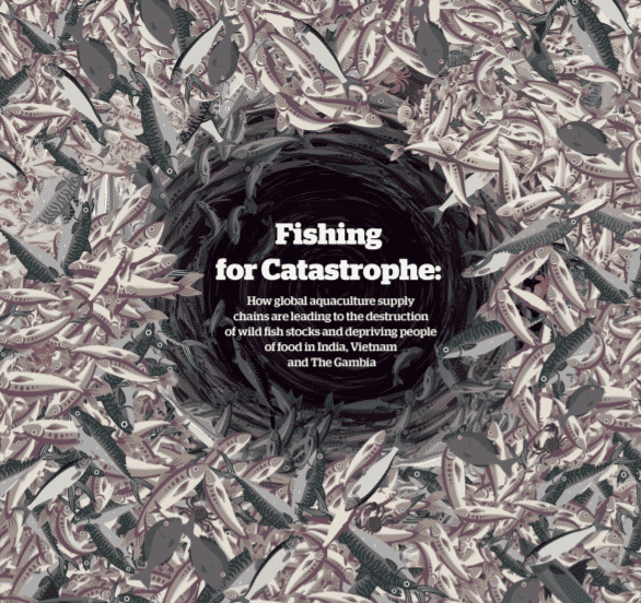 The cover of the new Changing Markets' report, which offers a powerful critique of the fishmeal and fish oil sectors