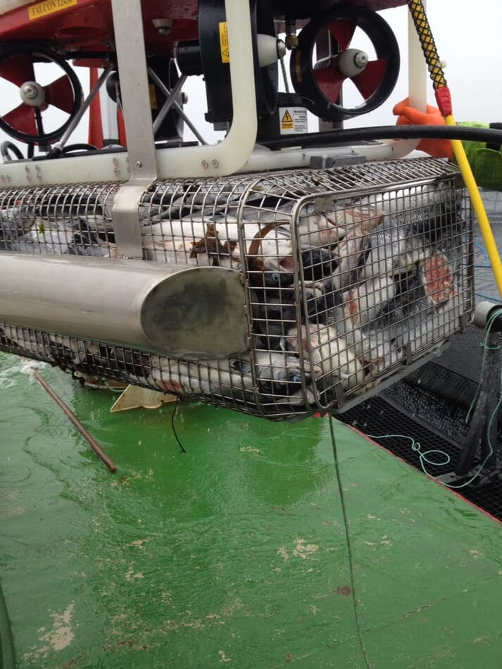The Foover can remove morts and is seen as having potential to clear the ocean floor of organic build-up below marine cages