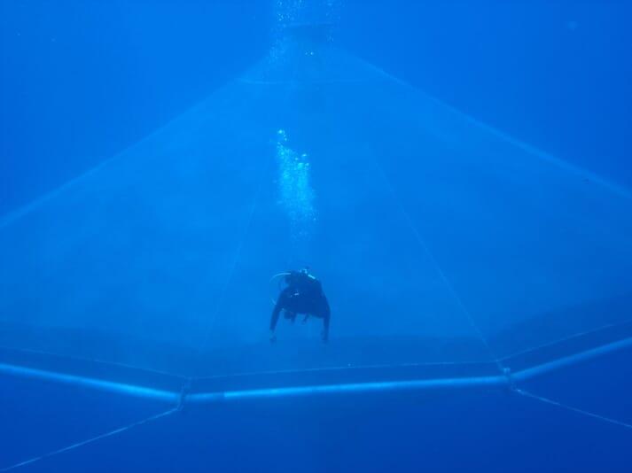 Open Blue farms cobia in InnovaSea's unique, submersible SeaStation pens