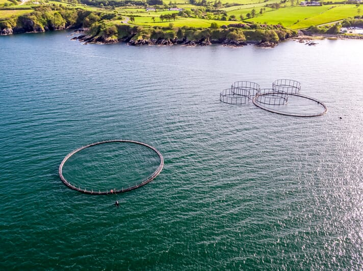 Fish cages in County Donegal, Ireland