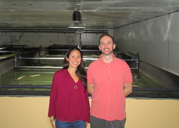 Lee and Kendra Tanner company, directors, Three-Sixty Aquaculture Limited