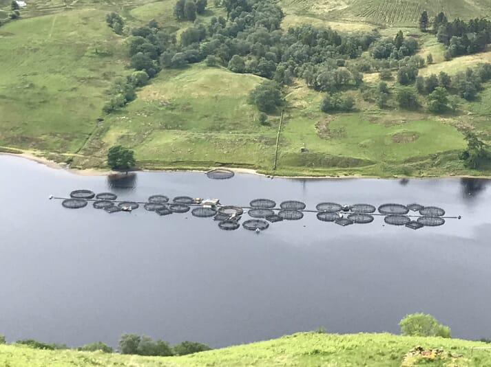 A trout farm on Loch Awe, in Argyll.