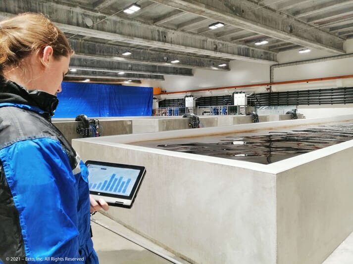 Ecto's data platform has been used by salmon producers in Norway, Chile and Iceland