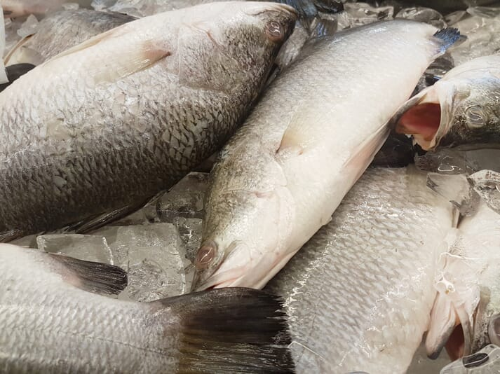 Kazakhstan currently produces only 9,000 tonnes of fish a year