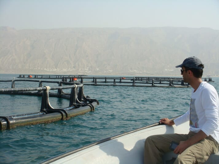 A view of the installed cages in a pilot farm north of Kish Island in the Persian Gulf. The farm has a nominal capacity of 3,000 tonnes of sea bream annually