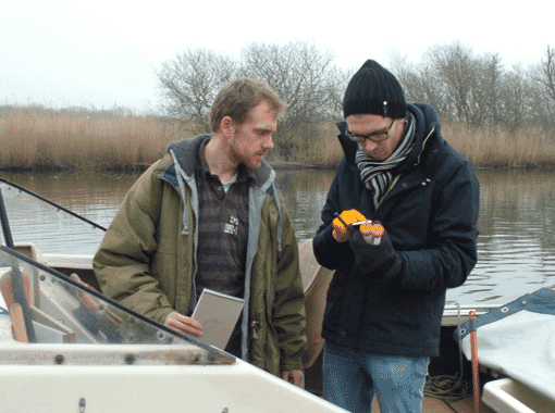 Hydrogen peroxide proved effective at preventing harmful algal blooms in the Broads