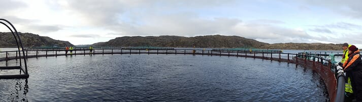 One of Russian Aquaculture's salmon sites