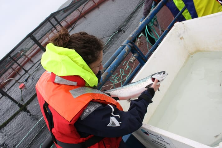 Fish handling techniques are central to the FishWell recommendations