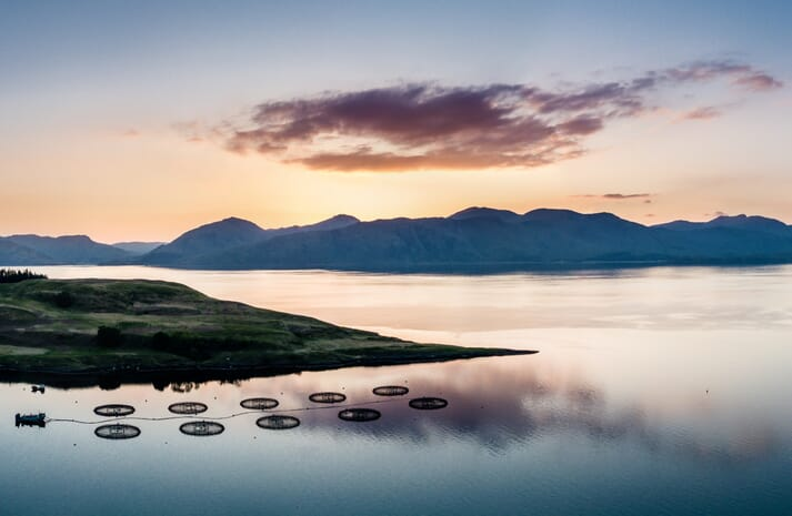 An aerial view of a salmon farm off the west coast of Scotland