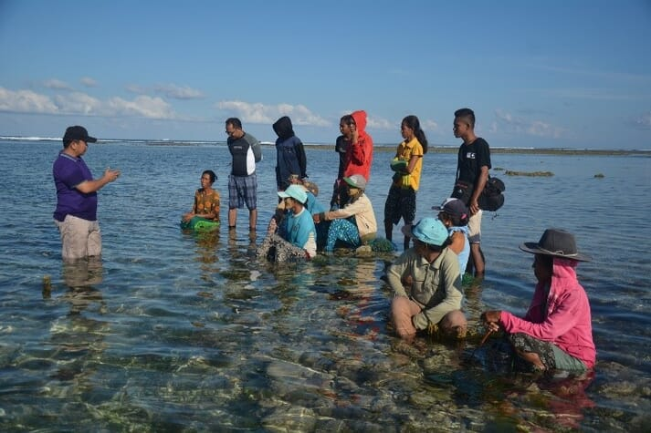 Over 1 million Indonesians are involved in seaweed aquaculture