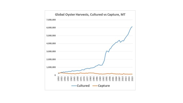 Global oyster production, covering wild-harvests and aquacultured oysters - since 1950 (click on image to enlarge)