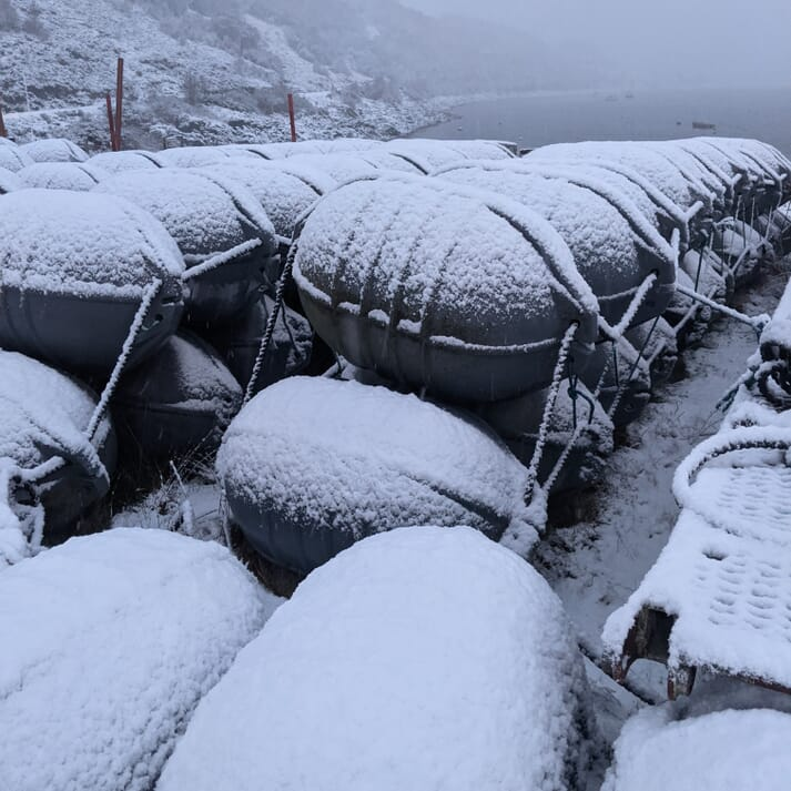 Mussel floats waiting to be deployed this spring
