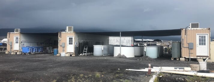 Pacific Hybreed has recently opened a hatchery at NELHA, in Hawaii