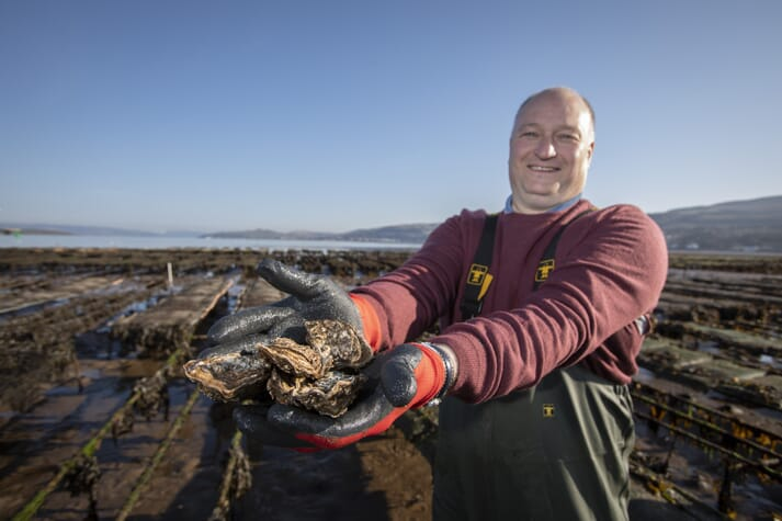 Alan Forbes, CEO of Cumbrae Oysters