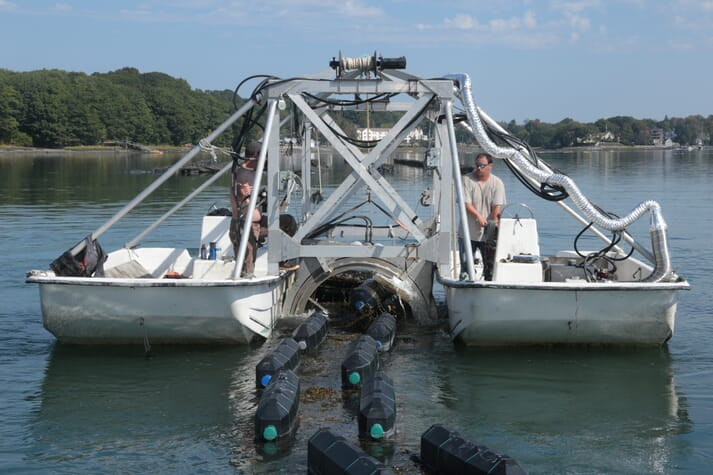 Flipping over oyster cages