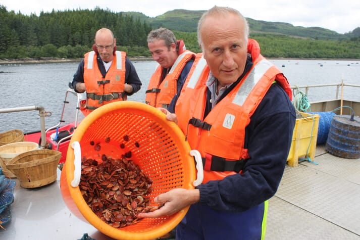 Scotland's largest IMTA project, on Loch Fyne, features the co-culture of salmon, seaweeds, sea urchins, mussels, scallops, and oysters.