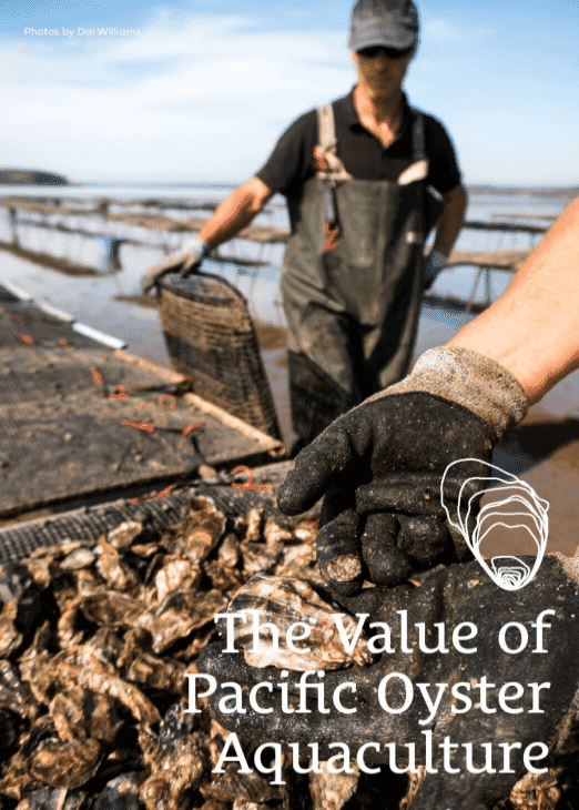 The Value of Pacific Oyster Aquaculture makes a compelling case for farming the species in UK waters