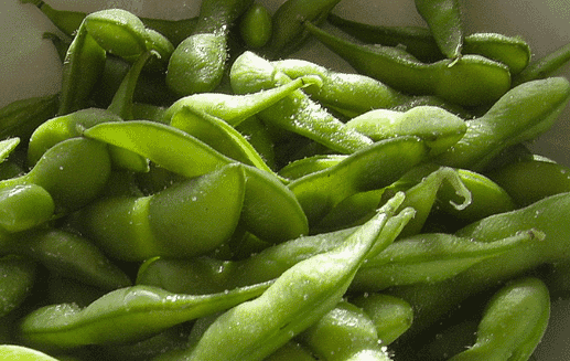 The workshop sought to promote the sourcing of responsibly-grown soy beans in salmon feed