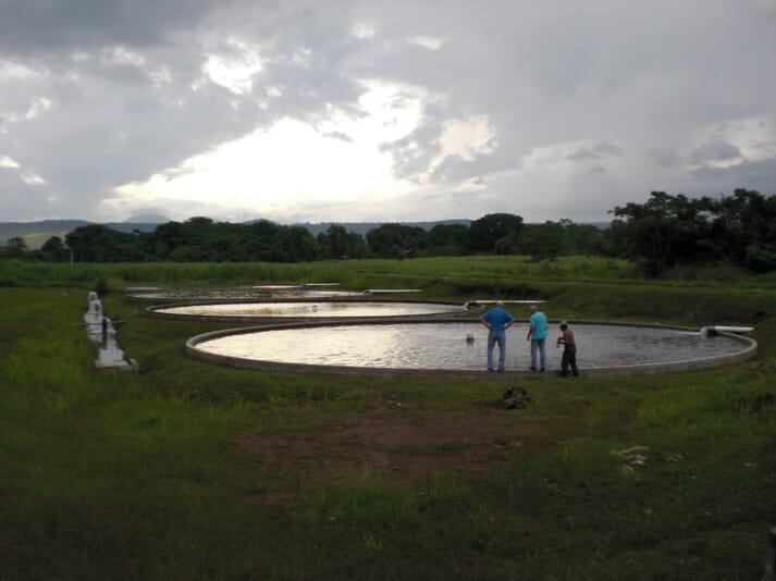 A tilapia farm in Honduras