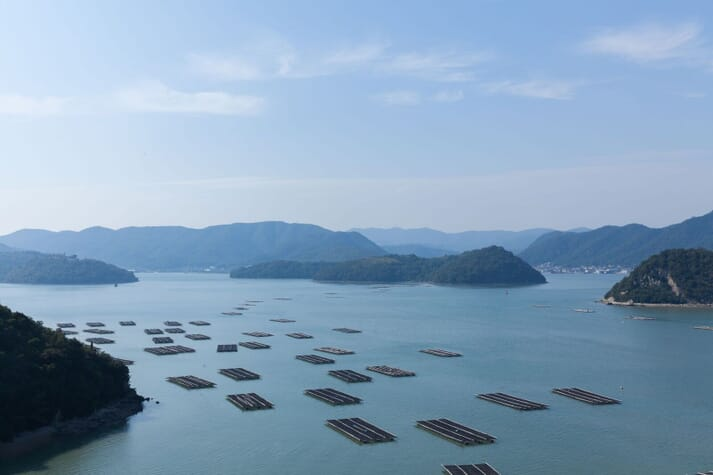 The Seto Inland Sea is known for its rich biodiversity and aquaculture industry