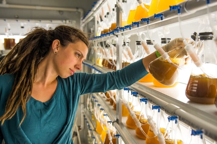Natalie Clark's Natalie's job covers everything from setting larvae and grading seed to cleaning upweller tanks and producing algae
