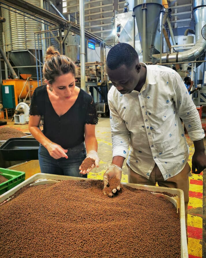 Cycle Farms sells feed made with black soldier fly larvae to Ghana's fish and poultry farmers