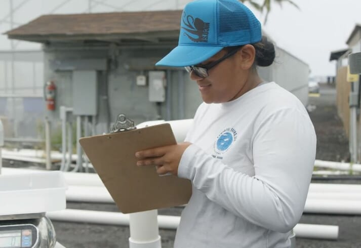Taimane recording data during a feed trial for Nenue (Kyphosus vaigiensis)