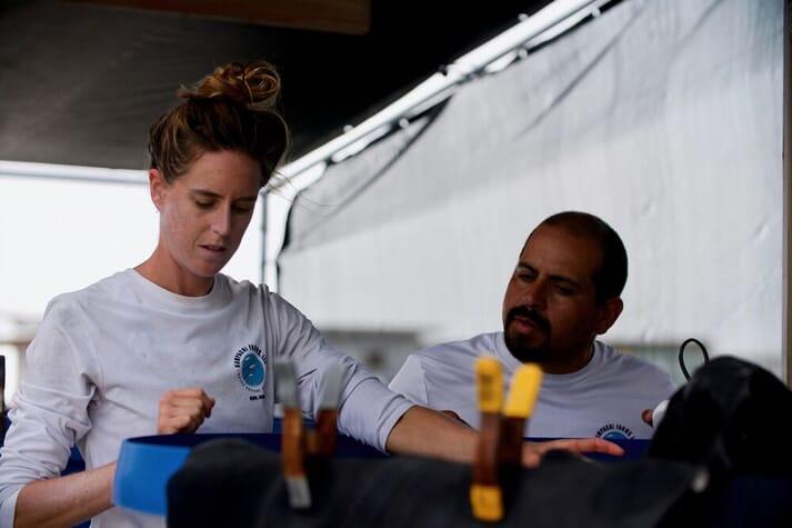 Helen Meigs and Daren Garriques observing feeding behaviour of fingerling mahi-mahi