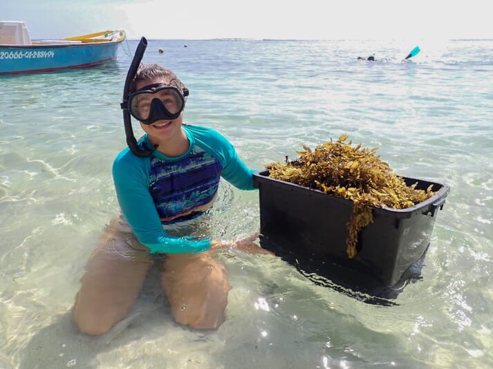Kara's current role includes gathering sargassum seaweed to feed the sea urchins