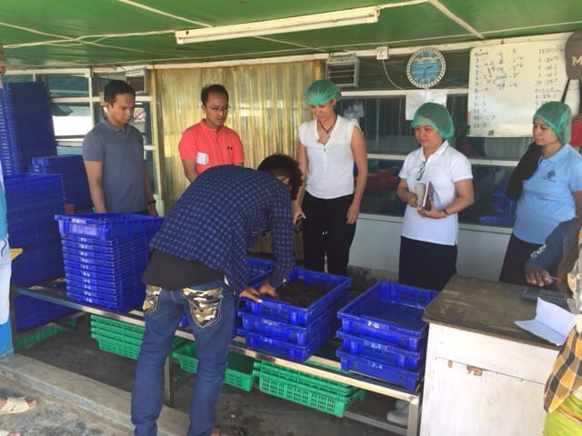 Kyra has trained producers, such as these soft shell crab farmers in Myanmar, in good aquaculture practices