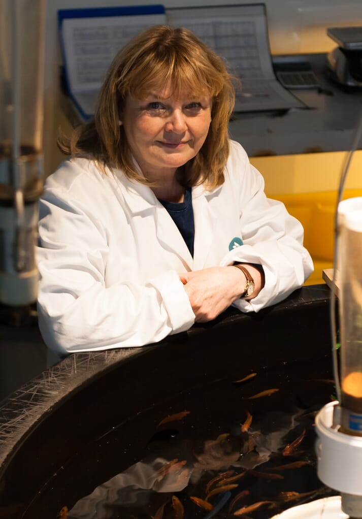 Marie-Clare is overseeing Benchmark's wrasse and lumpfish production at Ardtoe, Aultbea and Shetland